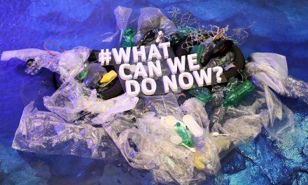 Alternative alla plastica monouso: facciamo il punto