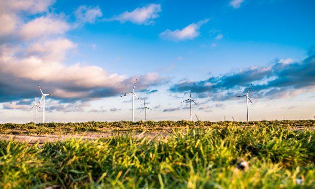 Green Deal: un nuovo marketing per una nuova economia